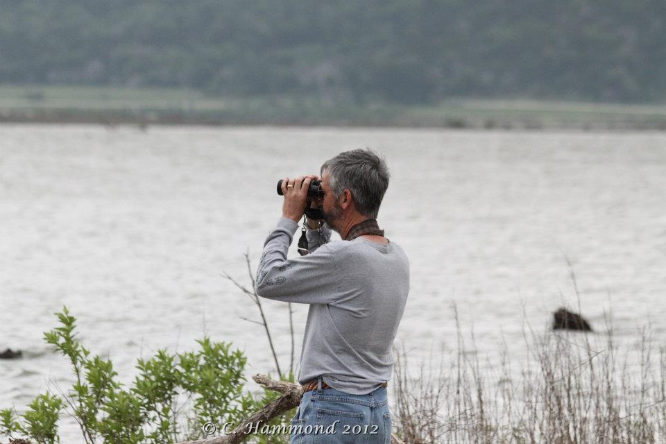 Randy looking for tern.jpg